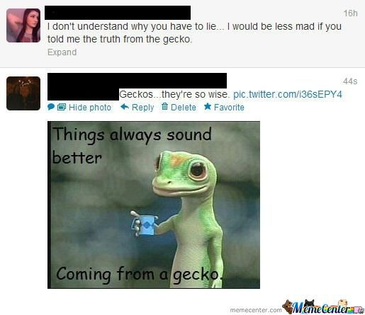 Should've Told Her From The Gecko..