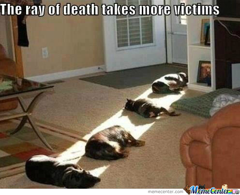 Silly Kitty, Death Rays Are For Humans