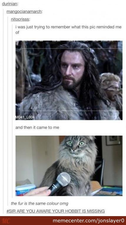 Sir, Are You Aware That Your Hobbit Is Missing ?!