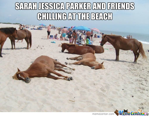 Sjp And Friends