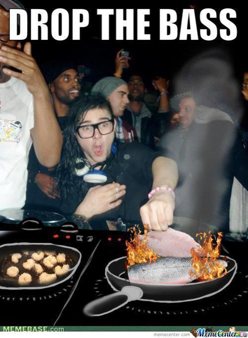 Skrillex Please