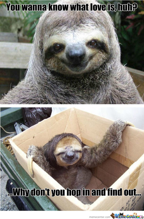 Sloth...it's Coming To Get You...