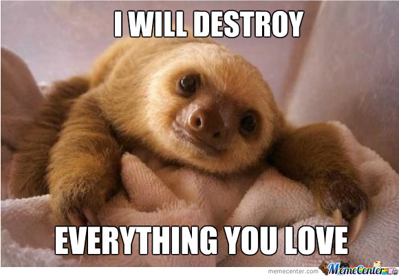 Sloths Are The Best.