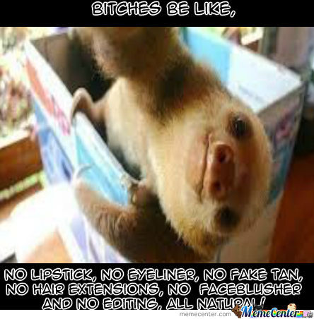 Sloths...soths Everywhere