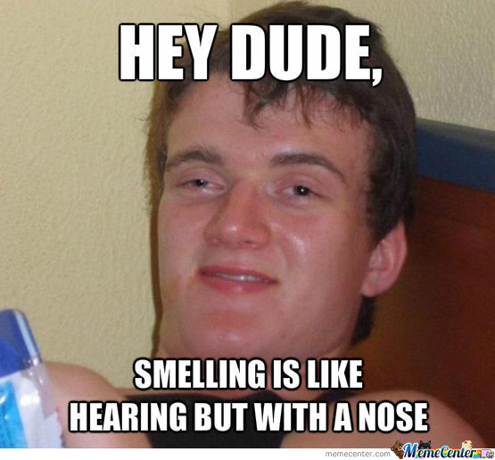 Smelling Is Like Hearing