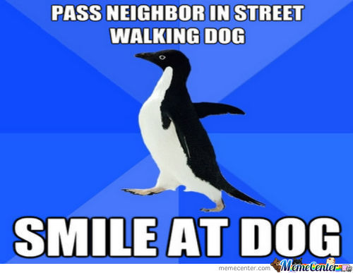 Smile At Dog !