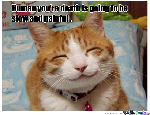 Smiling Cat . by williams - Meme Center