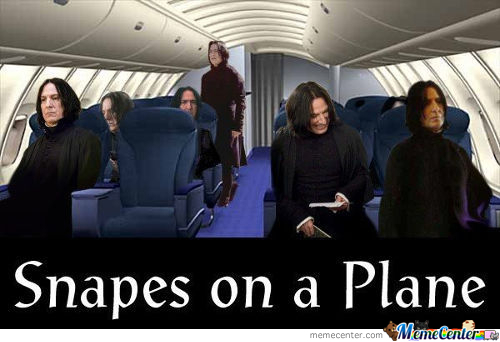 Snakes On A Plane Memes. Best Collection Of Funny Snakes