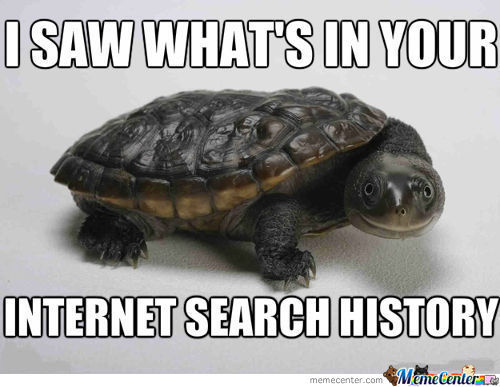 Snooping Search Turtle