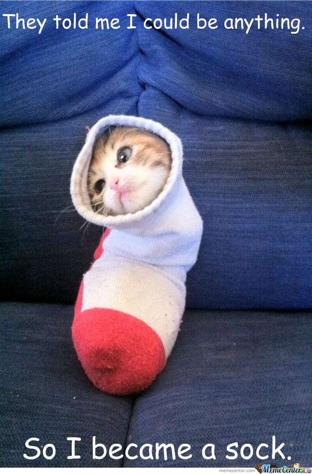 So I Became A Sock.