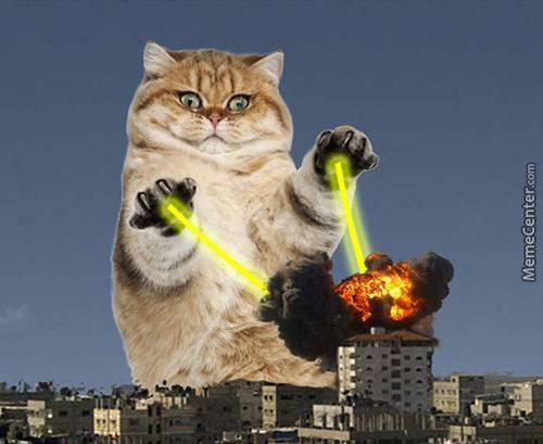 So I Googled Catpocalypse.........wasn't Disappointed