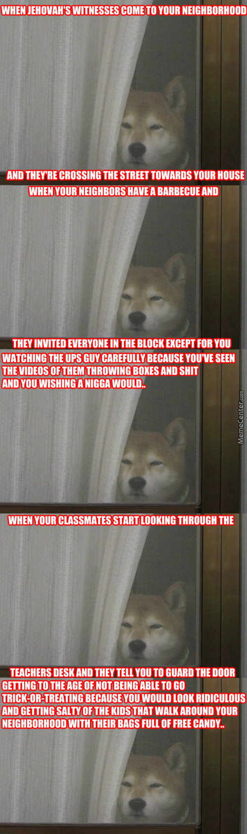 So Much Glare Wow Shiba Is Best Guard Doge