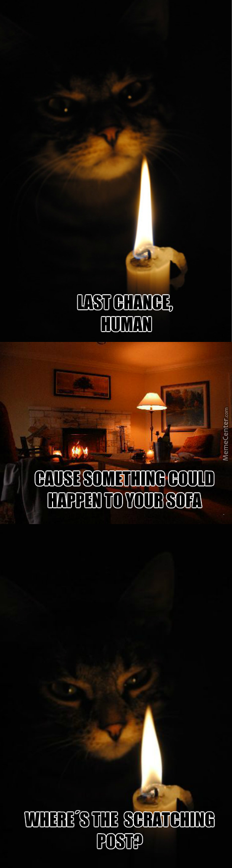 Sofa memes best collection of funny sofa pictures for Funny sofa pictures