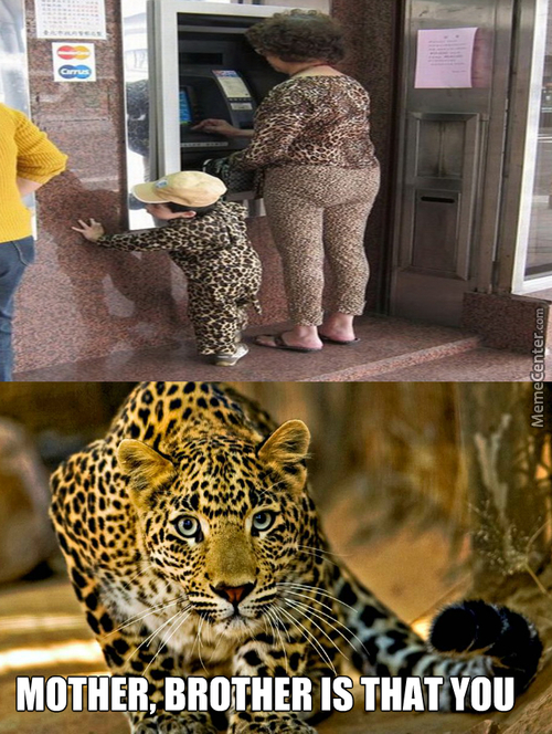 Someone Likes Leopard Print