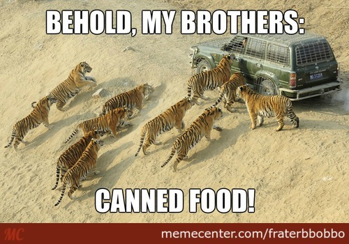 Sometimes They Want Processed Food