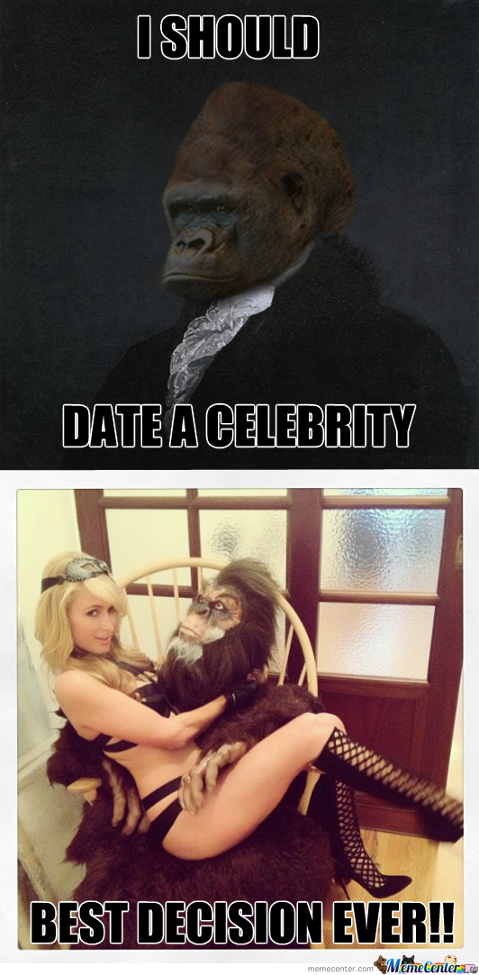 Sophisticated Gorilla