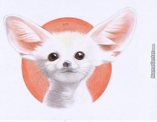 Sorry, Not A Meme. Baby Fennec Fox Doodle (Done Back In January)