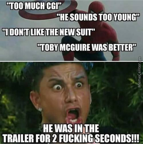 Spiderman In Civil War Haters