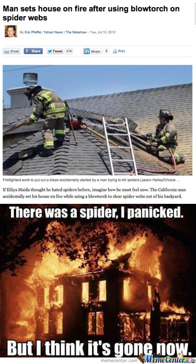 Spiders....