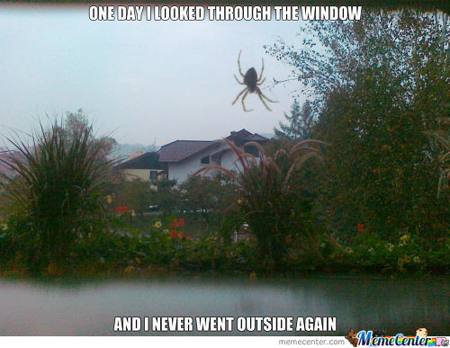 Spidey Is Out There, No Way Im Going Out.
