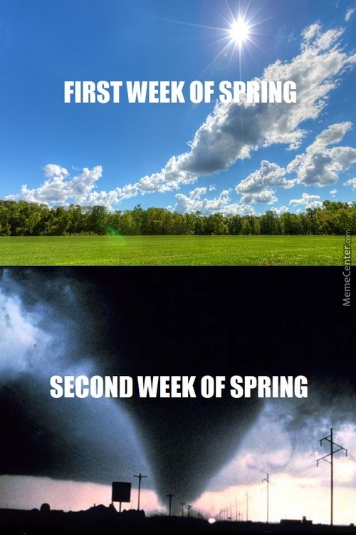 Spring In A Nutshell
