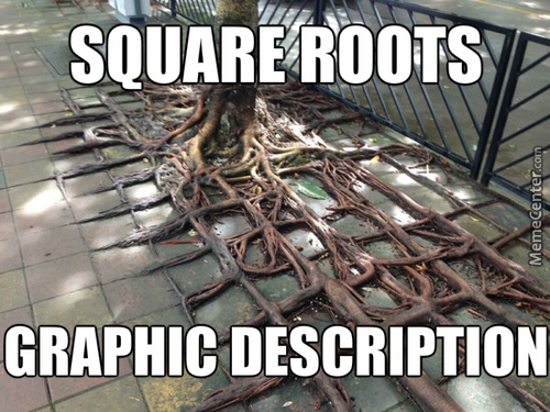 Square Roots.