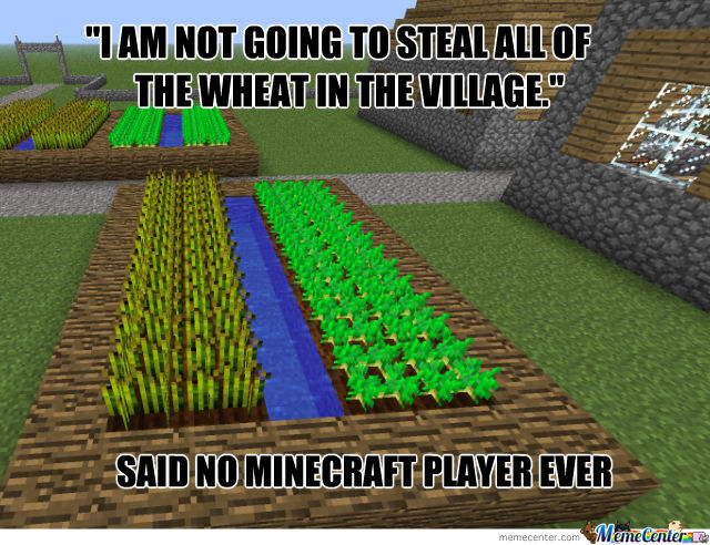 Steal The Wheat!