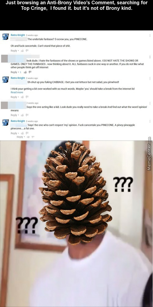 Stop Pinecone Abuse