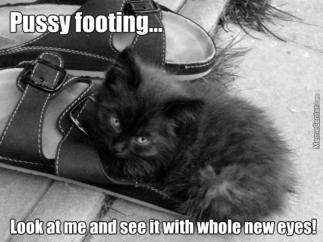 Pussy Footing 86