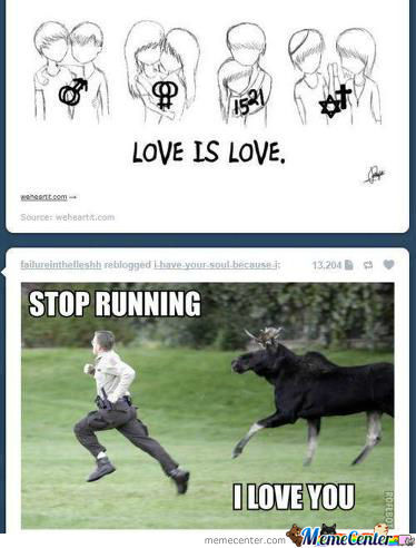 Stop Running I Love You !!
