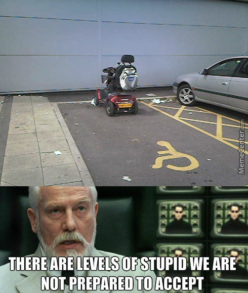 Stupid Level - Pro