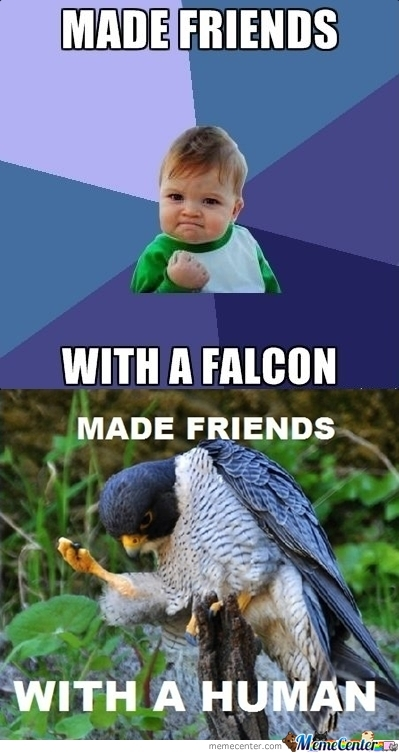 Success Kid With Success Falcon.