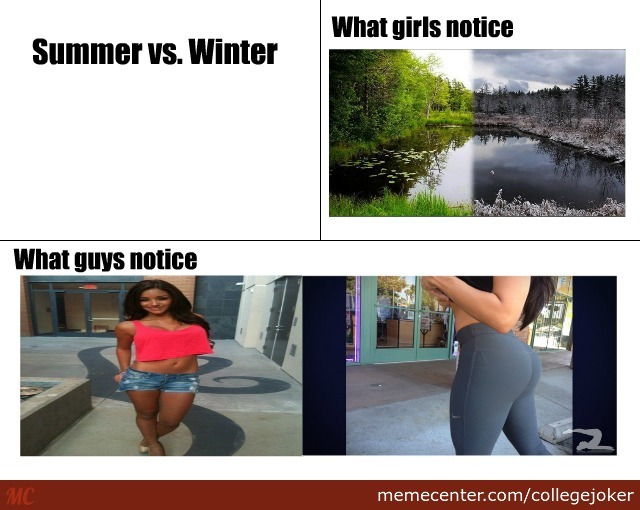 comparing summer and winter