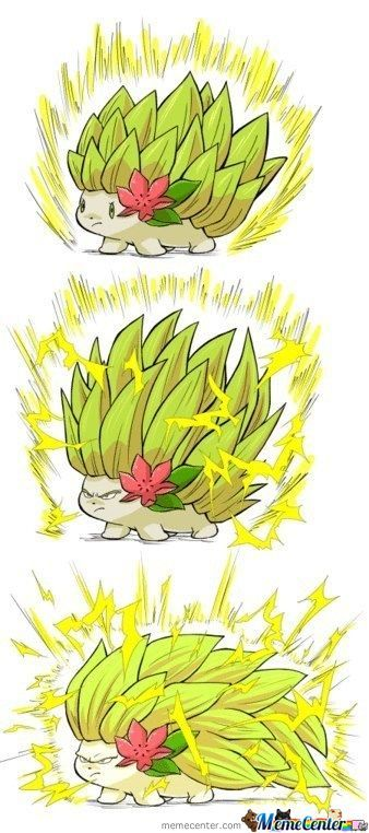 Super Shaymin