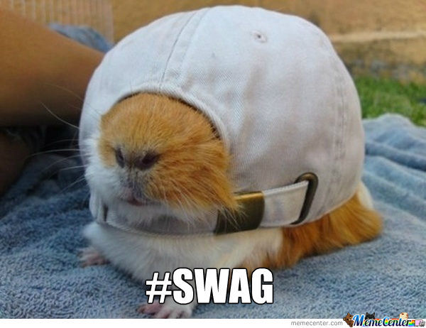 Swaggity Guineapig