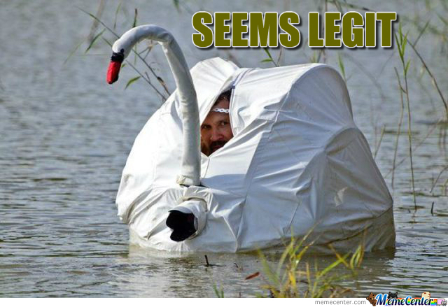 Swan Seems Legit