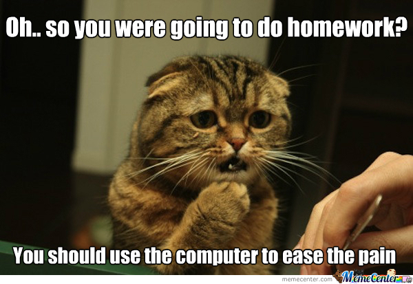 Sympathetic Cat: Homework