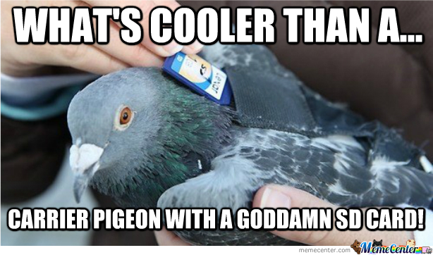 Taking Carrier Pigeons To The Next Level