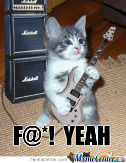 Teehee Rock On Cat
