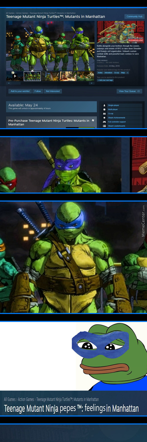 Teenage Mutant Ninja Pepes™: Feelings In Manhattan
