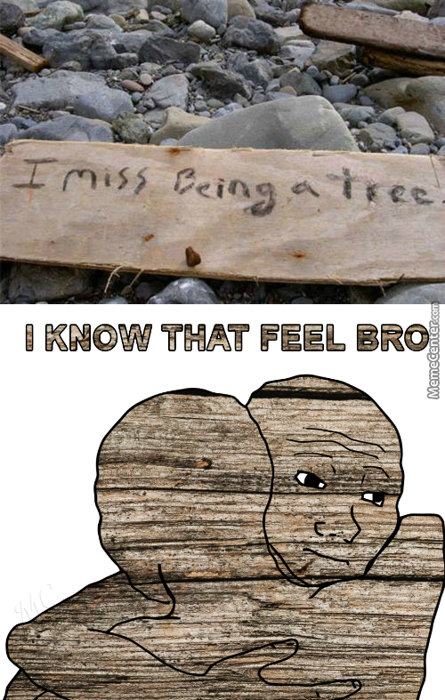 Tfw No Qt. 3.14 Tree Gf