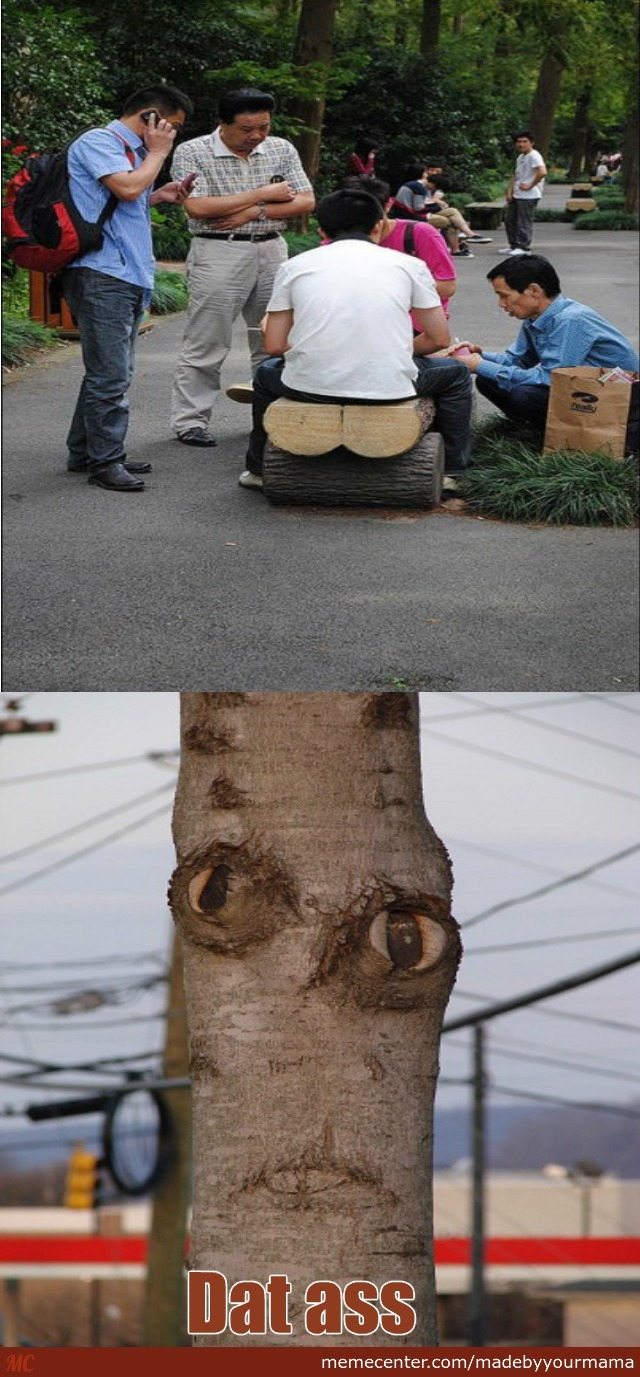 That's How Tree Baby Is Born