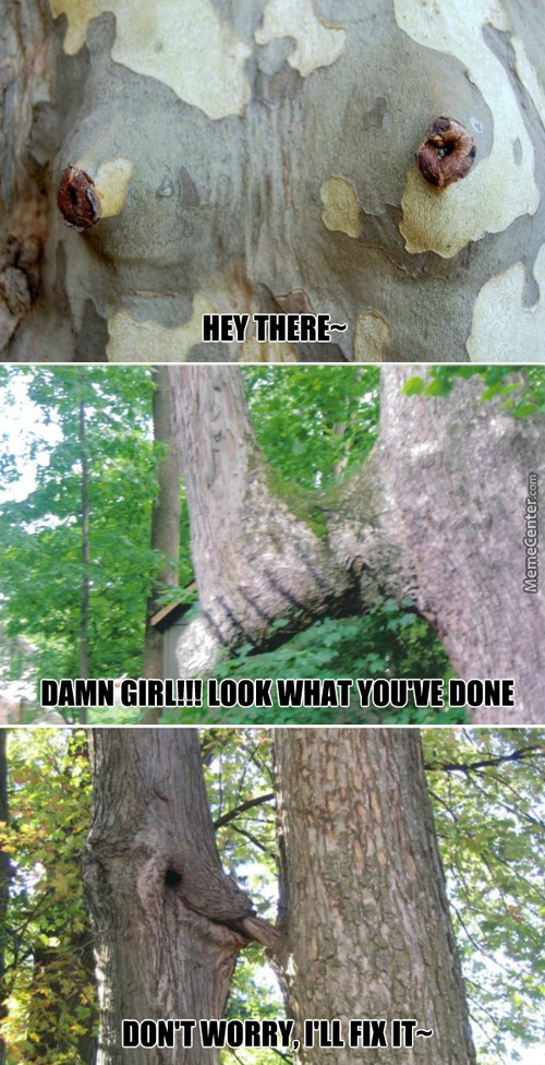 That Feel When Mother Nature Has More Game Than You