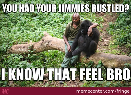 That Really Unrustled My Jimmies