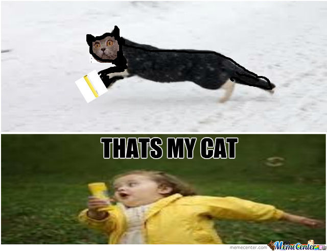 Thats My Cat by jessdeladerpo - Meme Center