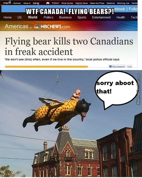 The Bear Probaly Apologise After The Accident.