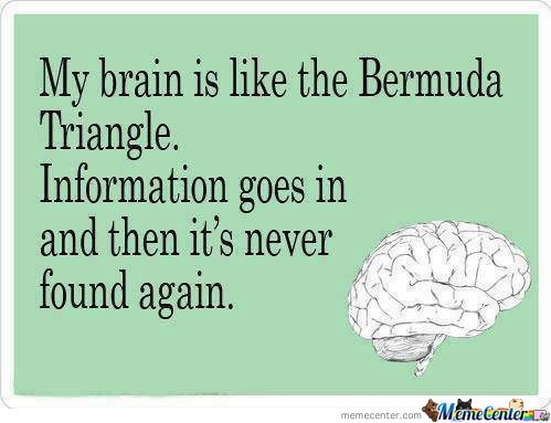 The Bermuda Brain