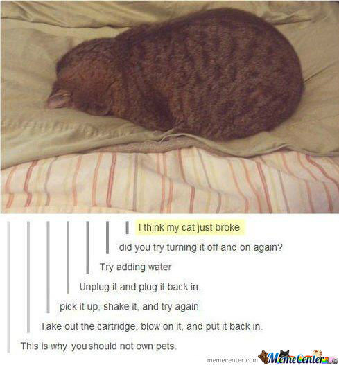 The Cat Broke