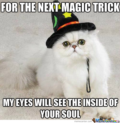 The Cat Wizard
