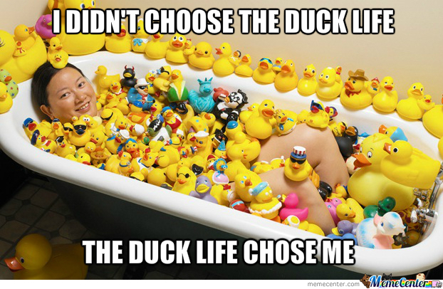 The Duck Life